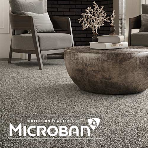 Microban carpet by Phenix from Abbey Carpet & Floor of Naples