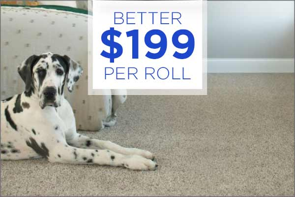 Better carpet remnants $199/roll during our Grand Opening Sale at Abbey Carpet & Floor Outlet!