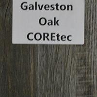 Galveston Oak